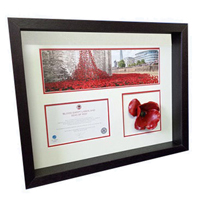Commerative Poppy Display Frames