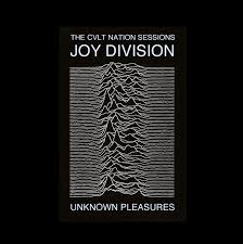 Unknown Pleasures Joy Division